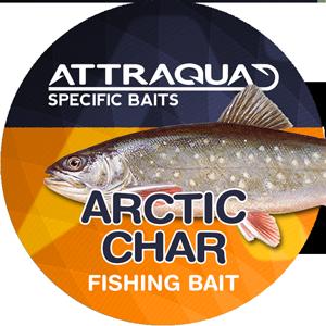 Arctic Char
